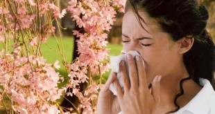 Алергии