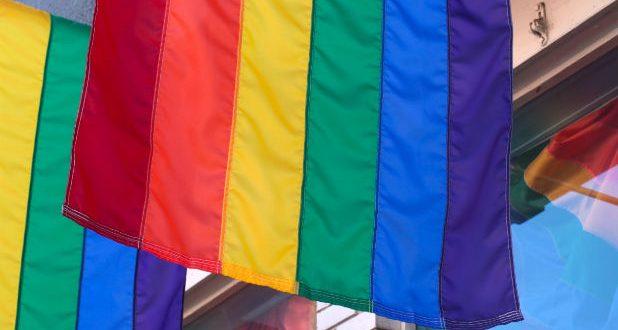 """Учени от университета """"Джонс Хопкинс"""" доказаха, че основният постулат на гей общностите """"така съм роден"""" е лъжа"""